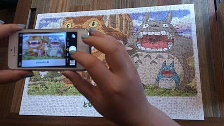 2015.04.25 1000pcs Totoro (2).jpg