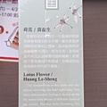 2016.04.23 108pcs Lotus Flower (1).jpg