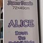 2016.04.23 1000pcs Alice - Down the Rabbit Hole (1).jpg