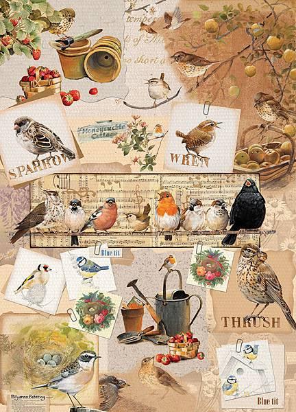 Otter House 1000pcs Garden Birds