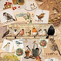 Otter House 1000pcs Garden Birds