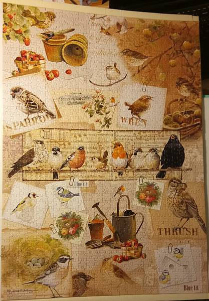 2016.12.24 1000pcs Garden Birds (2).jpg
