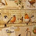 2016.12.24 1000pcs Garden Birds (3).jpg