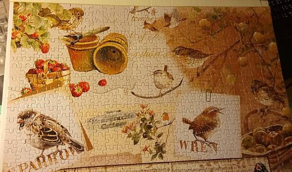 2016.12.24 1000pcs Garden Birds (4).jpg