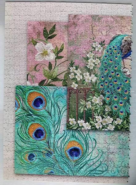 2017.01.28 2000pcs Jewel of the Gardens (9).jpg