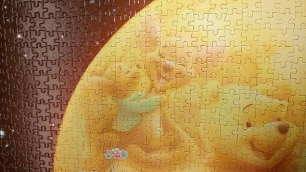 2017.02.19-21 2000pcs The Full Moon (Winnie the Pooh) (9).jpg
