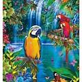Educa 500P Bird Tropical Land (7.31) (BV接).jpg