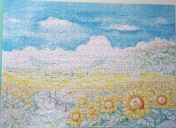 2017.03.08 500pcs Sunflower (1).jpg