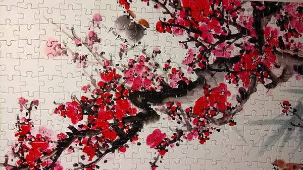 2017.03.11 600pcs 梅花圖 (5).jpg
