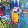 2017.03.25 500pcs Bird Tropical Land (2).jpg