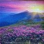 2017.03.25-26 1000pcs Meadow at Morning (3).jpg