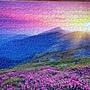 2017.03.25-26 1000pcs Meadow at Morning (4).jpg