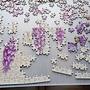 2017.03.31 1000pcs Flower Fairies (3).JPG