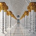 Grafika 300P Moschee, Abu Dhabi.jpg