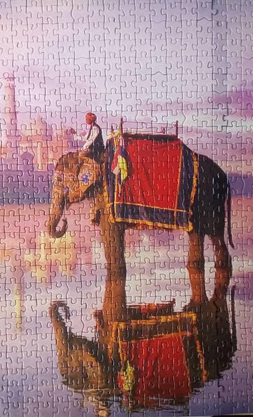 2017.04.26 1000pcs Elephant at Taj Mahal (3).jpg