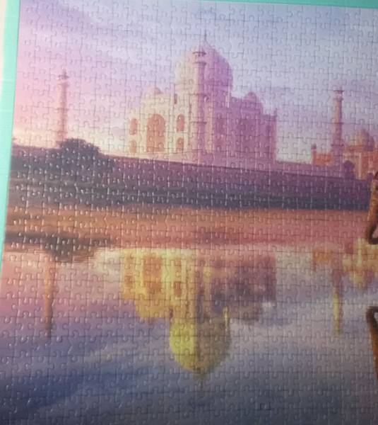 2017.04.26 1000pcs Elephant at Taj Mahal (4).jpg
