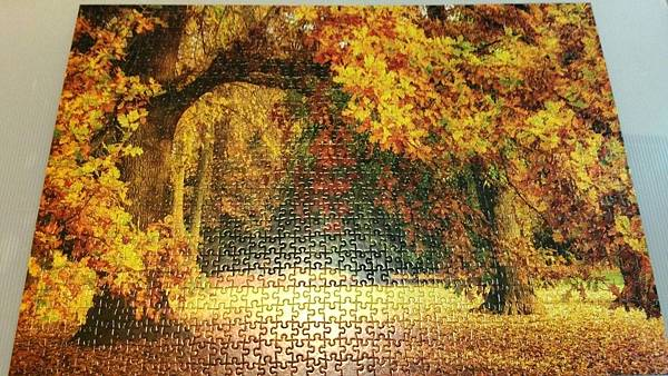 2017.07.12 1000pcs Autumn.jpg