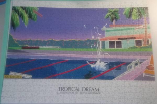 2017.08.02 500pcs Tropical Dream (3).jpg