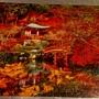 2017.08.18 500pcs Oriental Dream (2).jpg