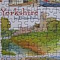 2017.10.22 250pcs Yorkshire (5).JPG