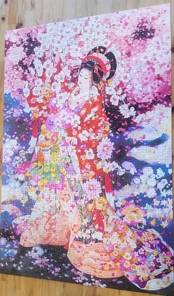 2017.11.25 1000pcs Sakura no yume (1).jpg