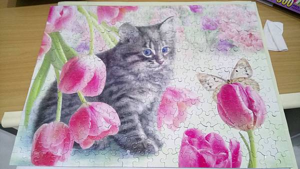 2017.12.26 300pcs Cat & Tulips (1).jpg