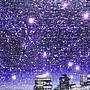 2018.02.01 500pcs Brooklyn Bridge Night Scene (2).jpg