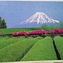 2018.02.04 500pcs Fujisan to chabatake 富士山靜岡茶田.jpg