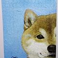 2018.02.14 300pcs 一伴系列7-柴犬.jpg