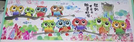 2018.03.03 954pcs Lucky Owls (5).jpg