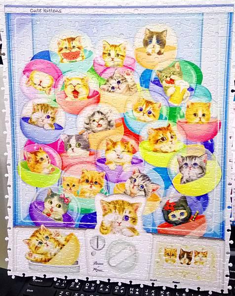 2018.04.13 500pcs Kittens in Capsule Machine (1).jpg