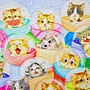 2018.04.13 500pcs Kittens in Capsule Machine (2).jpg