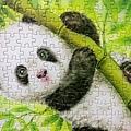 2018.06.06 300pcs Panda (3).jpg