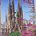 2018.06.11 1500psc Works of Antoni Gaudi (1).jpg