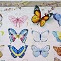 2018.06.17 1000pcs Painting of Butterflies (2).jpg