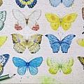 2018.06.17 1000pcs Painting of Butterflies (3).jpg