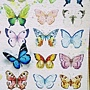 2018.06.17 1000pcs Painting of Butterflies (4).jpg