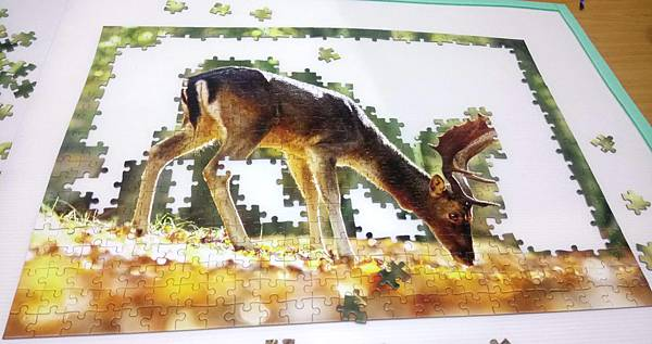2018.06.26 500pcs King of the Forest (1).jpg