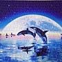 2018.08.02 500pcs Swim in the Moon (2).jpg