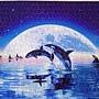 2018.08.02 500pcs Swim in the Moon (5).jpg
