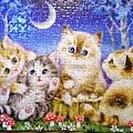 2018.08.11 300pcs Cats (2).jpg