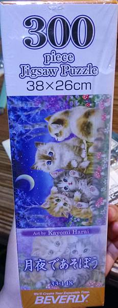 2018.08.11 300pcs Cats (1).jpg