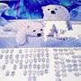 2018.09.03 1000pcs Polar Bear (3).jpg