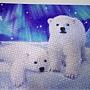 2018.09.03 1000pcs Polar Bear (7).jpg