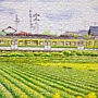 2018.10.16 368pcs Early Summer 初夏-新瀉縣-彌彥線矢作站 (2).jpg