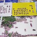 2018.11.06 2016pcs Sakura Japan.jpg