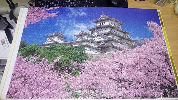2018.11.12 2016pcs Sakura Japan (2).jpg