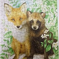 2018.11.28 300pcs Two Foxes (1).jpg
