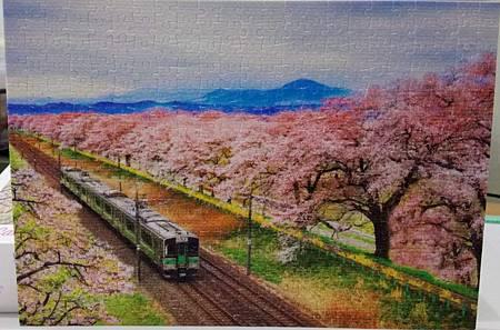 2019.02.25 368pcs Sakura Tunnel 櫻花隧道.jpg
