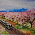 2019.02.25 368pcs Sakura Tunnel 櫻花隧道.jpg